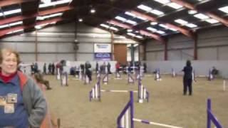 preview picture of video 'Dog Agility at Myerscough College ( jumping round )'
