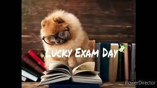 Pass Your Exam Subliminal