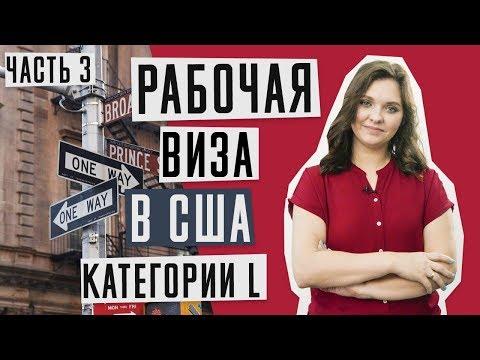 ВИЗА В США 🇺🇸 | Работа в США | Рабочая виза в США категории L | Юлия Голиневич