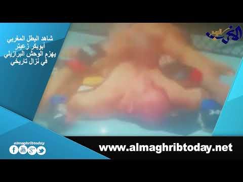 العرب اليوم - شاهد: البطل المغربي أبوبكر زعيتر يهزم الوحش البرازيلي