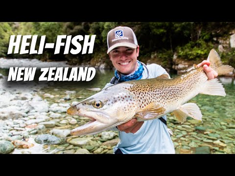 Chasing Summer - New Zealand Brown Trout On The Fly