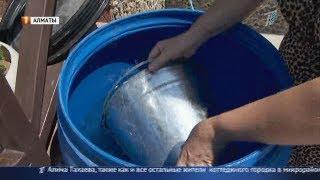 Жители поселка близ Алматы в жару остались без воды