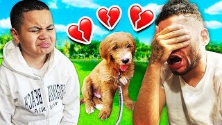 I CANT BELIEVE THIS HAPPENED TO MY LITTLE BROTHERS DOG!! **SADDEST DAY OF OUR LIVES!!** 💔