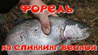 Форель на спиннинг/ вертушка MEPPS в деле/
