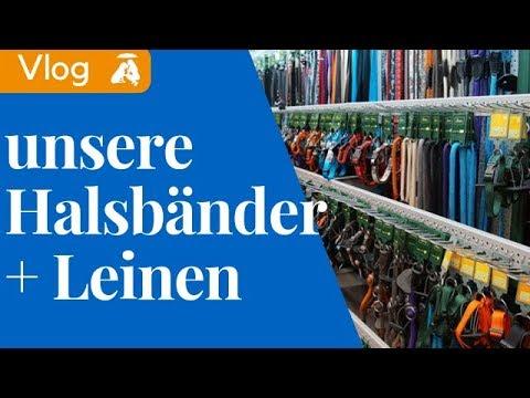 Vlog#2 Unsere Halsbänder und Hundeleinen / Mia and Me DogTV