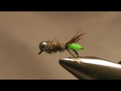 The Peeping Caddis