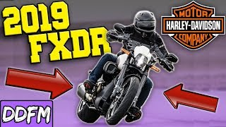 2019 Harley FXDR 114 First Look!!