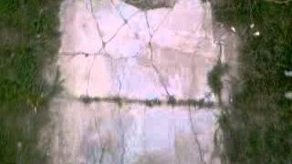 preview picture of video 'Pasos 1 vereda (las rosas)'