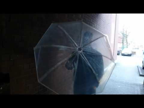LED Regenschirm transparent, Blau
