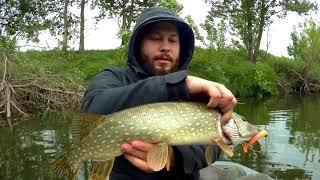 Плавающая резина для рыбалки форум