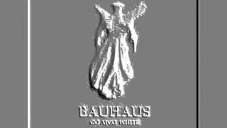 ADRENALIN   BAUHAUS