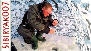 5 видов РЫБЫ за рыбалку!.. Ловля на мормышку Чёртик. Рыбалка в палатке [Sibiryak007]