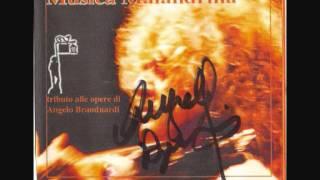 Alessandro Pellegrini - Donna Mia [A. Branduardi cover]