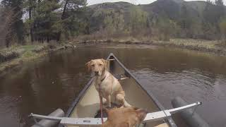 Sun Dog's flatwater canoeing adventure is truly one of a kind, confirmed on our scouting trip th