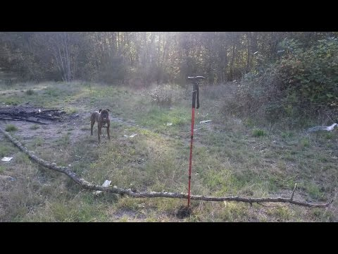 SE LED Illuminated Collapsible Hiking Stick/Trekking Pole Review