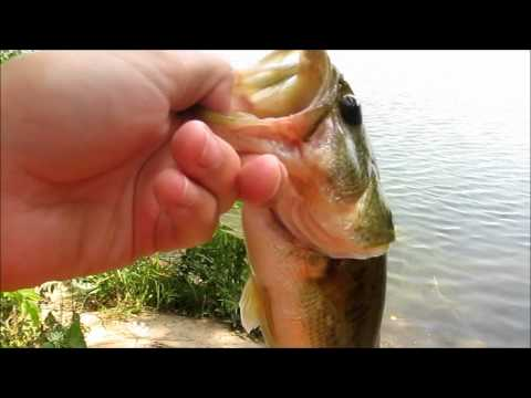Bass Fishing at Spring Mill Pond