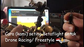 Cara (kami) seting Betaflight untuk Drone Racing/ Freestyle ????????????