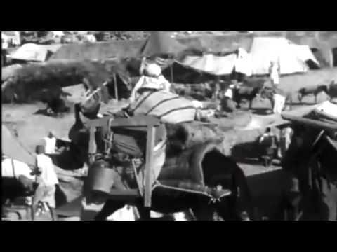 Tappeti Berberi: il Marocco che non avete mai visto