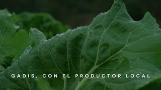 Supermercados GADIS Verduras Chelín anuncio