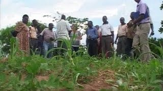 preview picture of video 'Agriculture Business Development -- Value Chain Kolir Sub county, Eastern Uganda at a Glance'