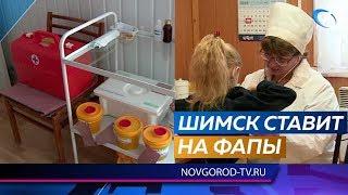 Жители Шимского района довольны качеством работы ФАПов
