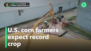 Favorable weather leads to bumper U.S. corn crop