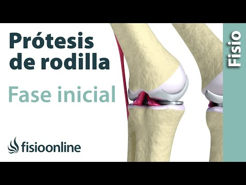 Ejercicios para las articulaciones de la cadera para los niños
