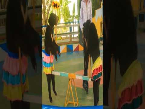 Performance Show   Urso Circense  Animais de Circo  Animais No Circo  2021  #Shorts