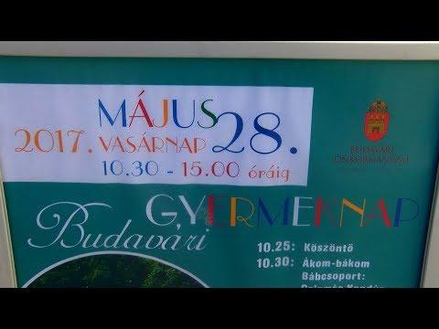 Budavári gyermeknap 2017 - video preview image