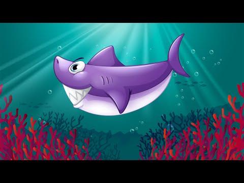 Video of Kids Ocean Fish Scratch Off