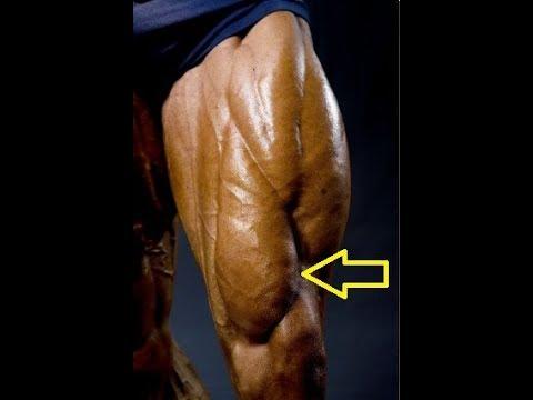 Si on peut faire tous les muscles dans un jour