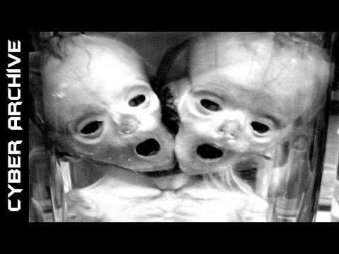 Video 15 Disturbing Human Experiments That Actually Happened