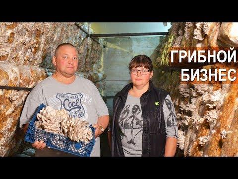"""Грибной бизнес семьи Топорковых. Вешенка и другие грибы. Агрофирма """"Грибы Урала""""."""
