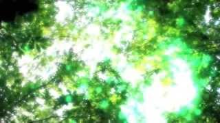 Forest&CrystalBowlHealing森林浴&クリスタルボウルヒーリング