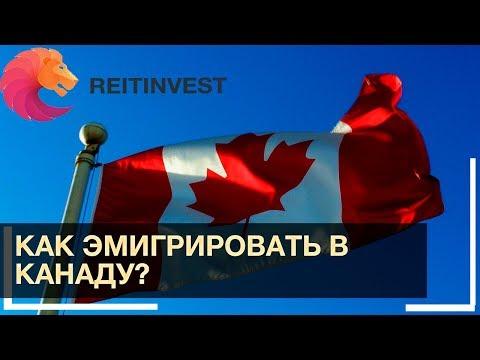 🇨🇦🏃👉Как эмигрировать в Канаду? Легальные пути эмиграции!