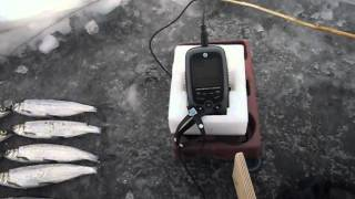 Jj connect fisherman 220 duo ice edition mark ii