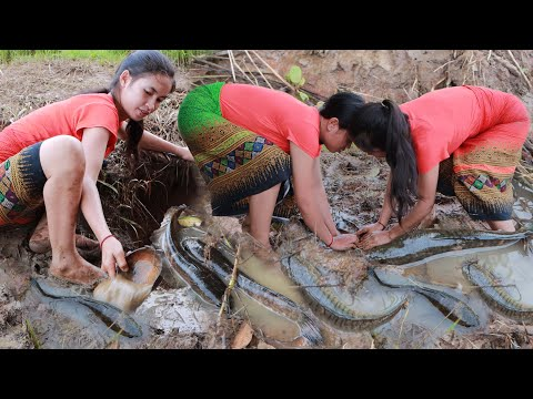 Two girls Catches fish and cooking recipe | How to cook fish for eating | primitive life KH