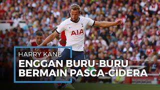 Striker Tottenham Harry Kane Enggan Buru-buru Bermain Pasca-pulih dari Cedera
