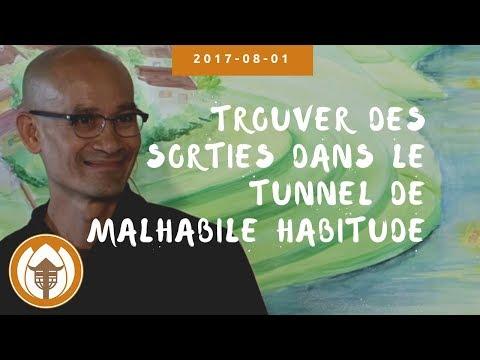 2017 08 01 Br Pháp Liệu: Trouver des Sorties Dans le Tunnel de   Malhabile Habitude (Adultes)