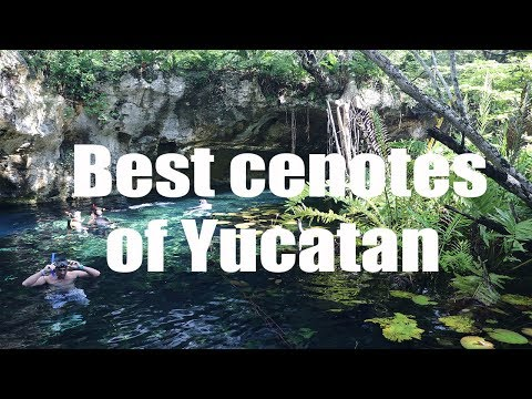 Best cenotes of Yucatan, Mexico | Canon 80D | Virtual Trip