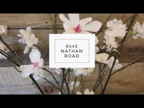 David Olson Presents: 6445Nathan.com