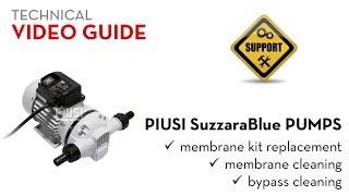 Насос для мочевины (AdBlue) )Piusi SuzzaraBlue