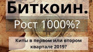 Биткоин. Рост 1000%?  Киты в первом или втором квартале 2019? Прогноз BTC #bitcoinify