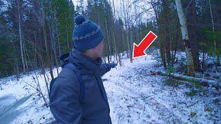Встретил в лесу пса, и вот что потом произошло...
