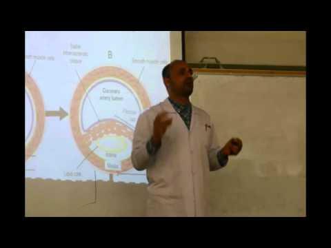 Pylli me pisha për pacientët hypertensive