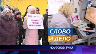Партия «Яблоко» провела митинг против изменений в шимской медицине