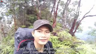 preview picture of video 'Pendakian Gunung Daik 1165mdpl, Tgl, 08-09 Desember 2018 #perpetuallingga'