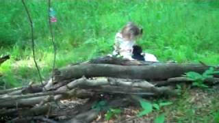 Sugarwings and the puppies in the Fairy Tree House