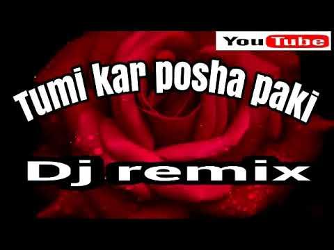 Tumi kar posha pakhi ( তুমি কার পোষো পাখি) Dj remix song