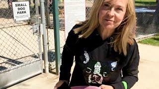 Part 2  Dog Park Safety Tips